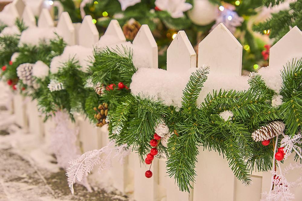 Decorar un jardín en Navidad con acebos