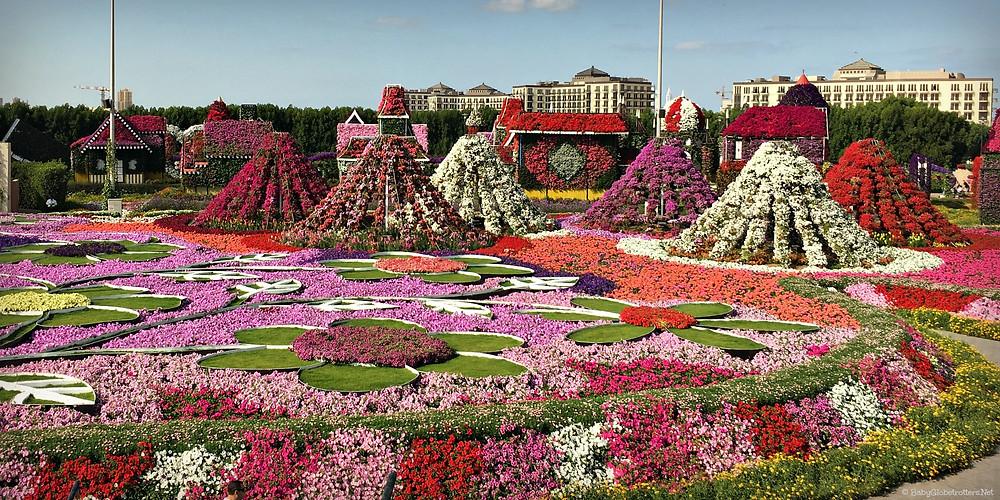Jardines más bonitos del mundo: Miracle Garden (Emiratos Árabes Unidos)