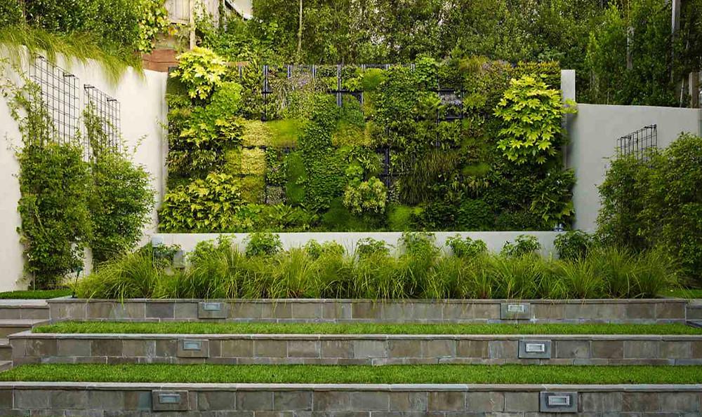 Jardines verticales en jardines