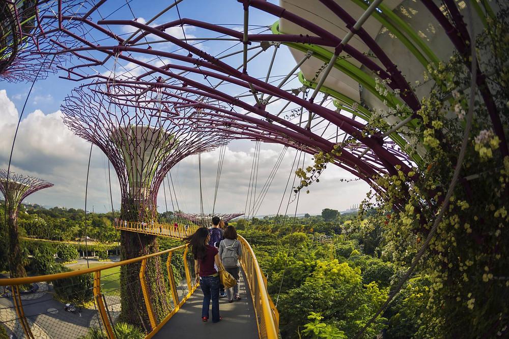 Jardín vertical en los Jardines de la Bahía (Singapur)