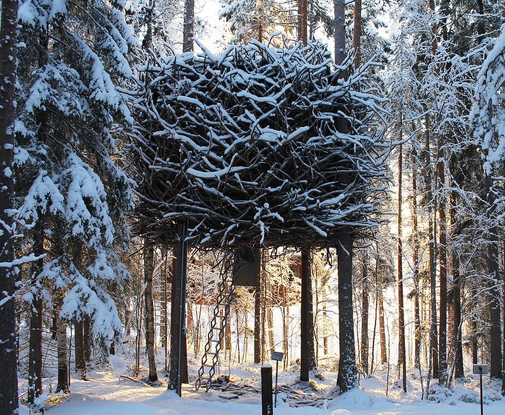 7 impresionantes casas de árbol: el nido de pájaro