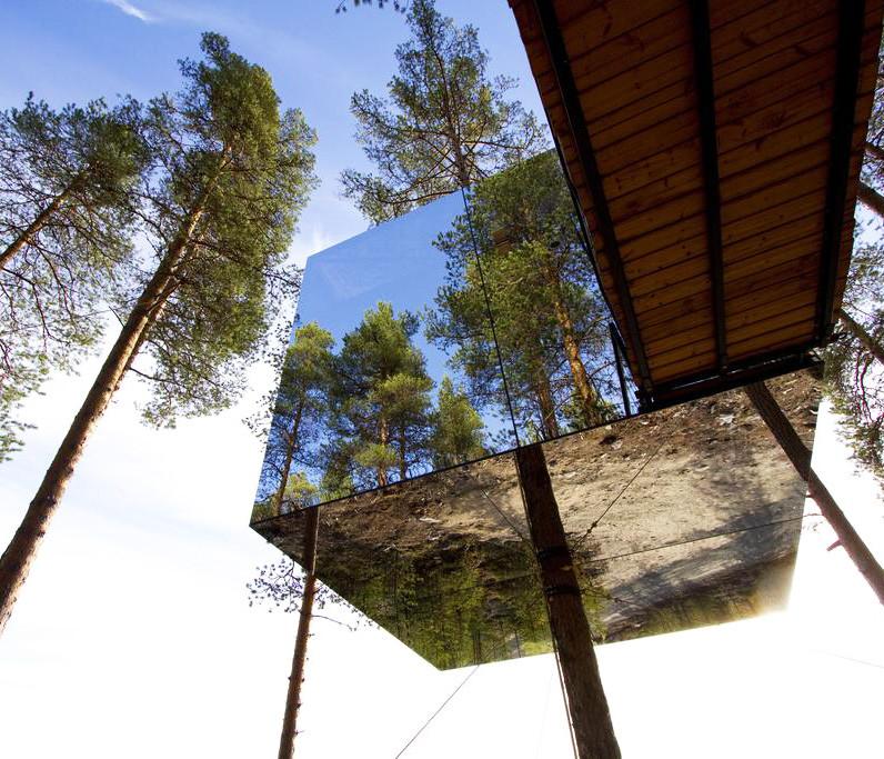 7 impresionantes casas de árbol: la casa invisible