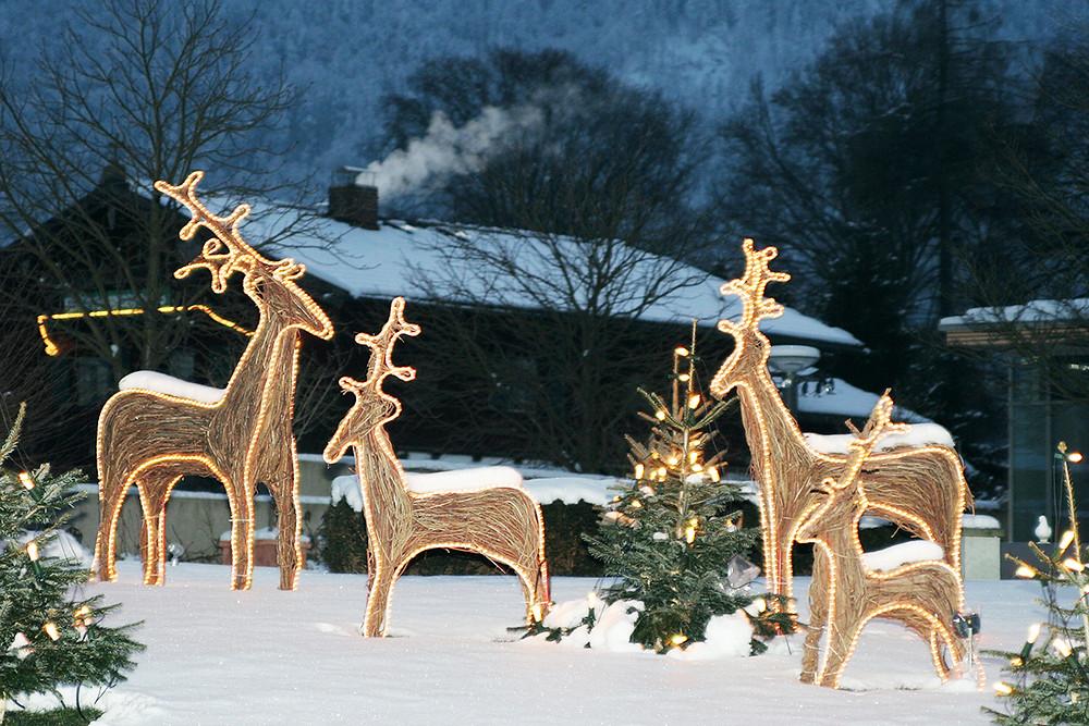 Decorar un jardín en Navidad con renos