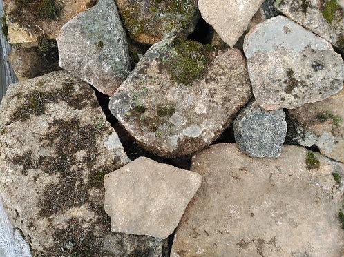 Piedra irregular musgo selección claro