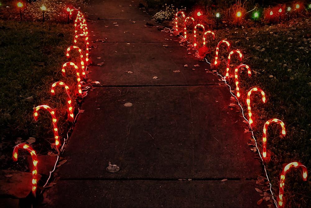 Decorar un jardín en Navidad con bastoncillos led