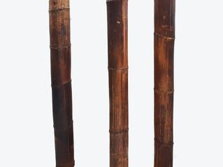 BAMBÚ NATURAL DECORATIVO 240 cm. DE ALTURA Y 10 cm. DE DIÁMETRO