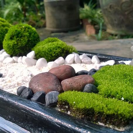 13 jardines zen en miniatura para hacer tú mismo