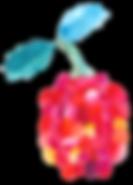 72_rasberry.png