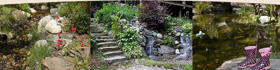 Natural Ponds and Landscaping