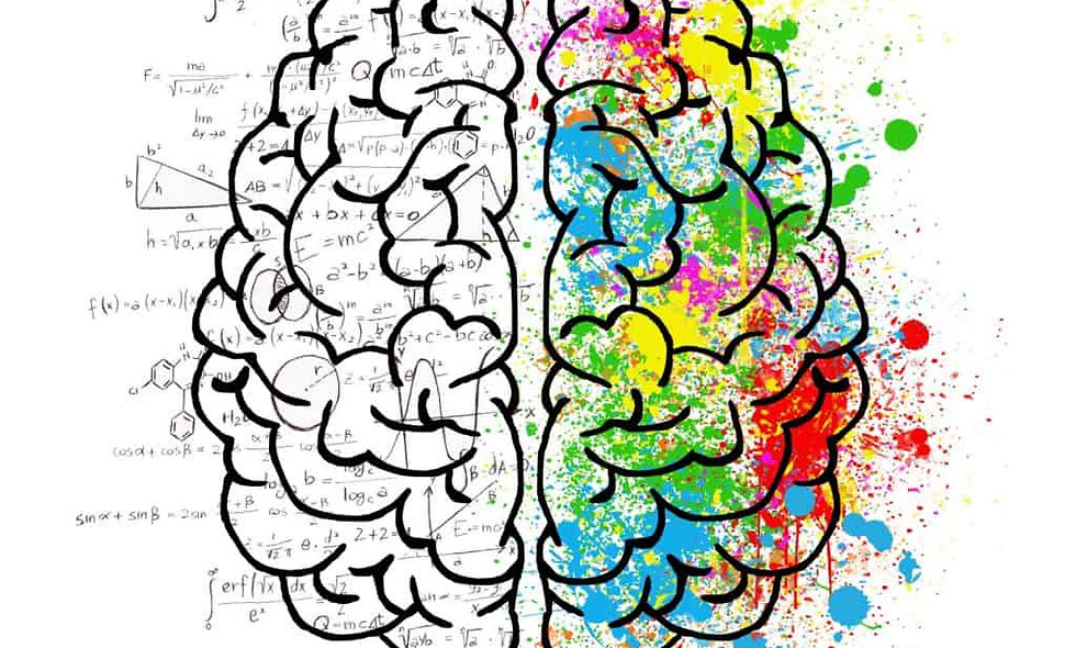 Una palestra per la mente