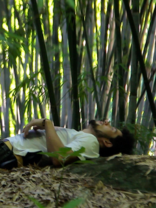 bambooforest1.png