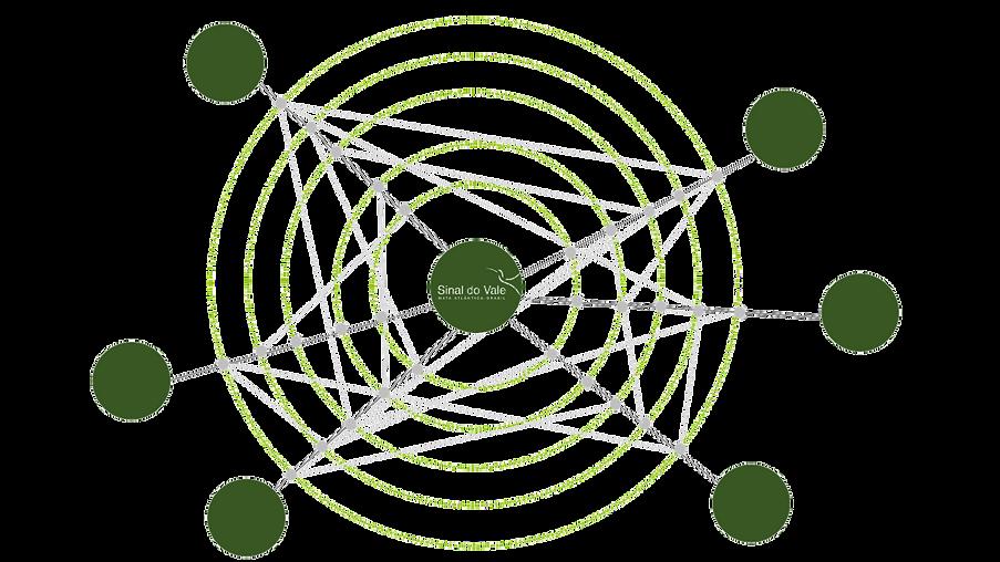 NetworksGraph_Webiste_transparent.png