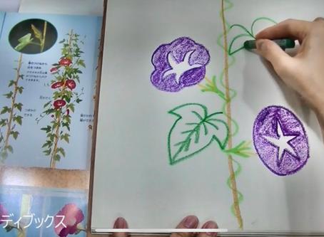 親子でクレヨン画レッスン②花の描き方〜チューリップ〜アサガオ