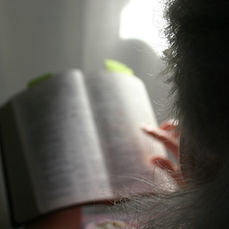 79816_Reading_Bible.jpg