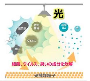 光触媒 抗菌 抗ウイルス.PNG