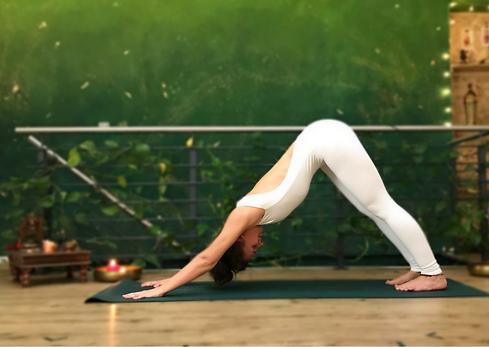 A-Yoga Beginnerklasse