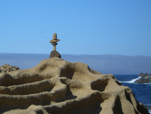 Point Lobos, California, USA