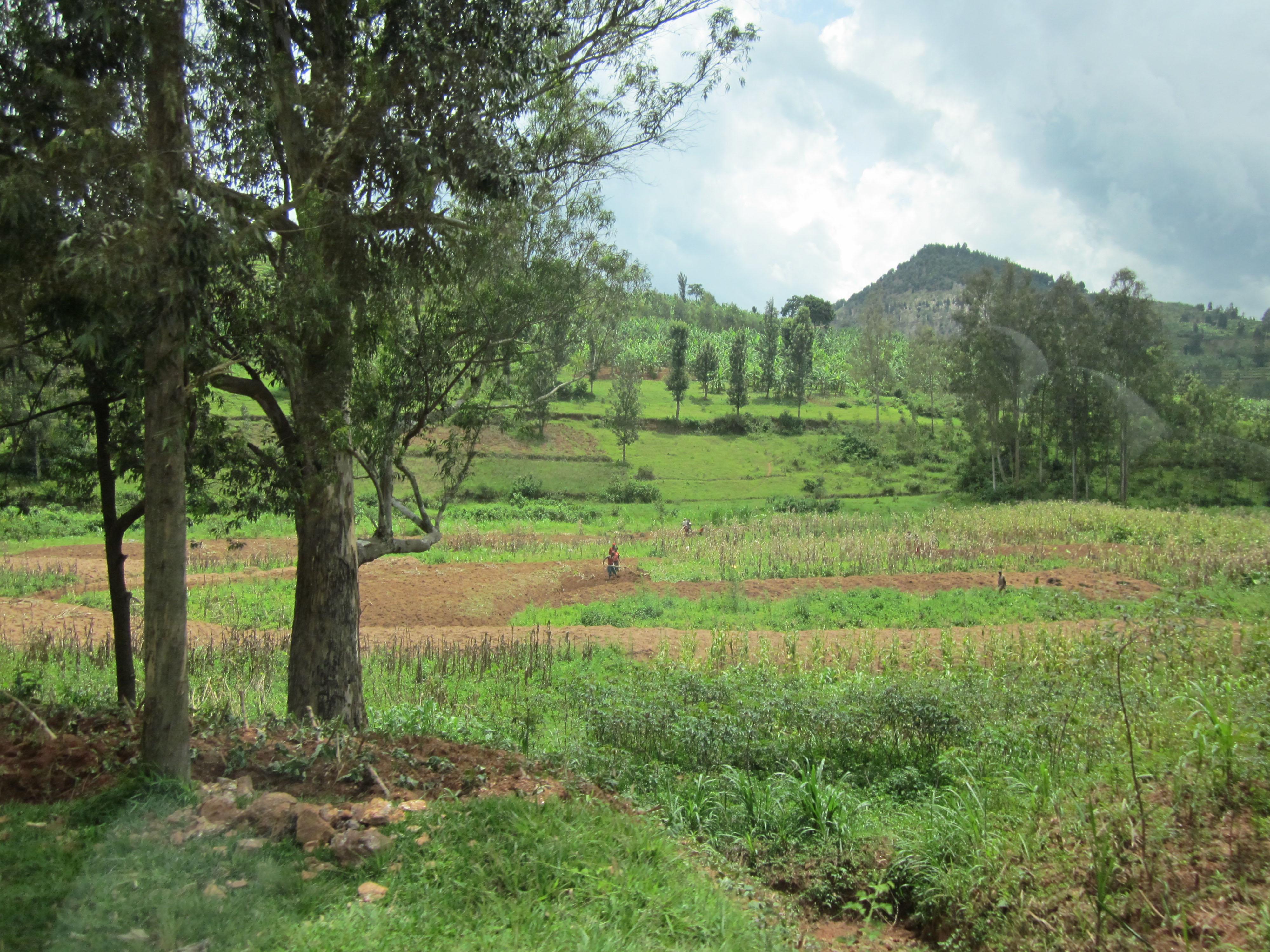 grantcouch-rwanda-03