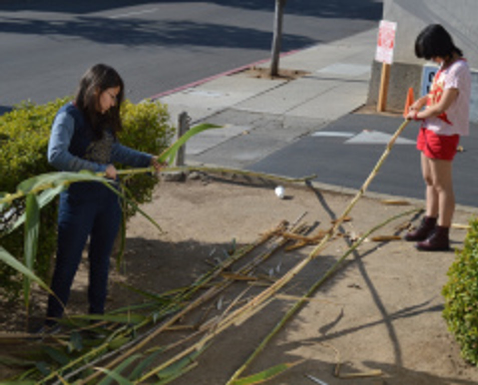 Neeva and Pica build a pea trellis from arunda donax, which they harvested and stripped from a cluster grown within El Presidio SHP. Photo by Michael Imwalle.