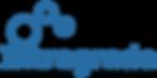 Intragrade Logo