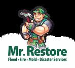 Mr. Restore Vector Opt 3-01.png