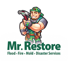 Mr. Restore Vector Opt 3-01.png