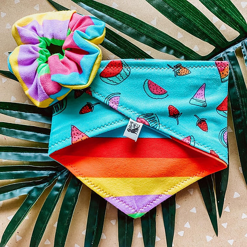 Rainbow Melon