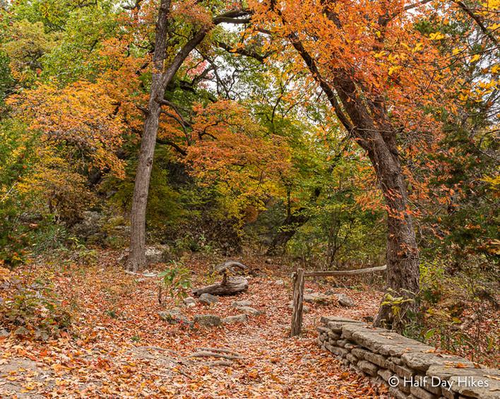 Maple Trail