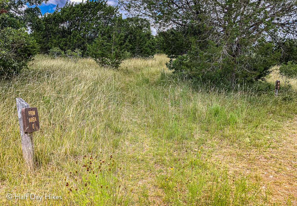 Trail to Primitive Campsite E