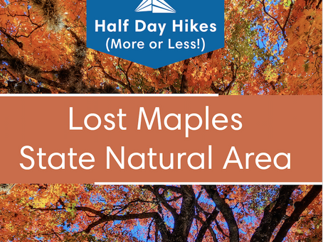 In the News: Lost Maples Hiking Guide - Just in Time for Peak Fall Foliage Season in Texas.