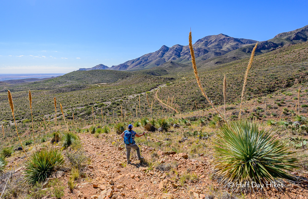 Old Tin Mine Access Trail