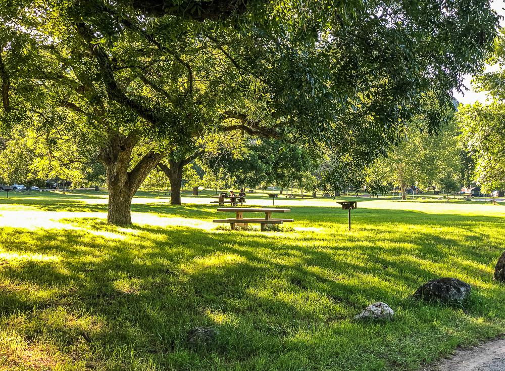 Pecan Grove Day Use Area