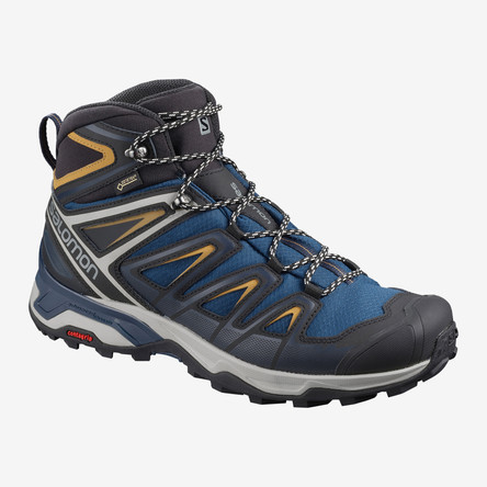 Mens Soloman GTX Shoe