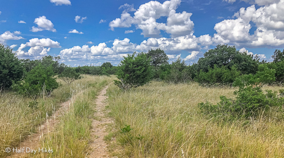 Plateau Grasslands