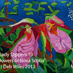 10 Lady Slippers index.jpg