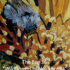 36-The-Bee index.jpg