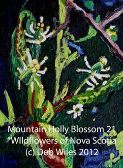 Mountain Holly Blossom