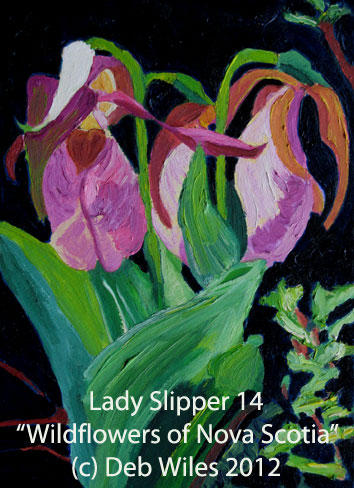 14 Lady Slipper index.jpg