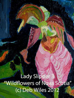 Lady Slipper #3