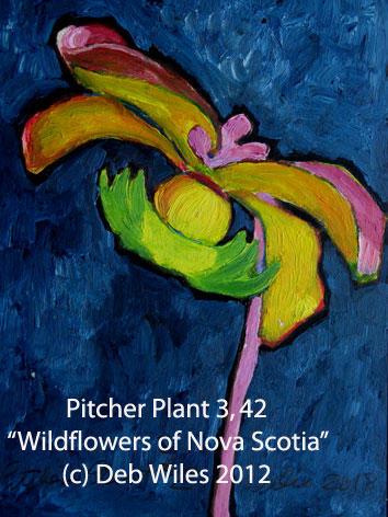 42-Pitcher-Plant-3 index.jpg