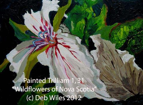 31-Painted-Trilliam-1.jpg