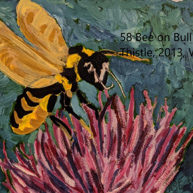 58 Bee on Bull Thistle index.jpg