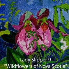 9 Lady Slipper index.jpg