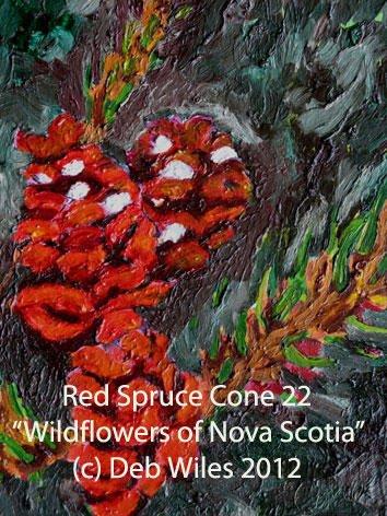 22-Red-Spruce-Cone index.jpg