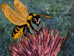 58 Bee on Bull Thistle index