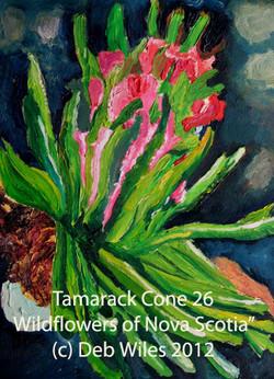 Tamarack-Cone