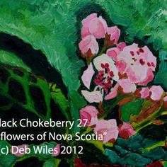 27 Black Chokeberry index.jpg