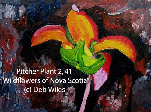 41-Pitcher-Plant-2 index.jpg
