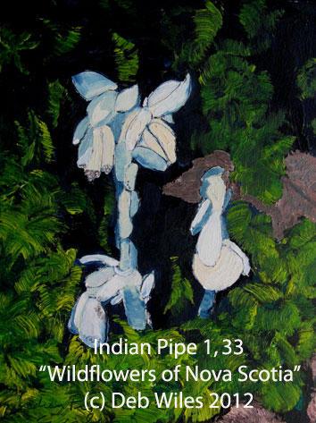 33-Indian-Pipe-1.jpg