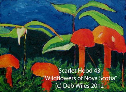 43-Scarlet-Hood index.jpg